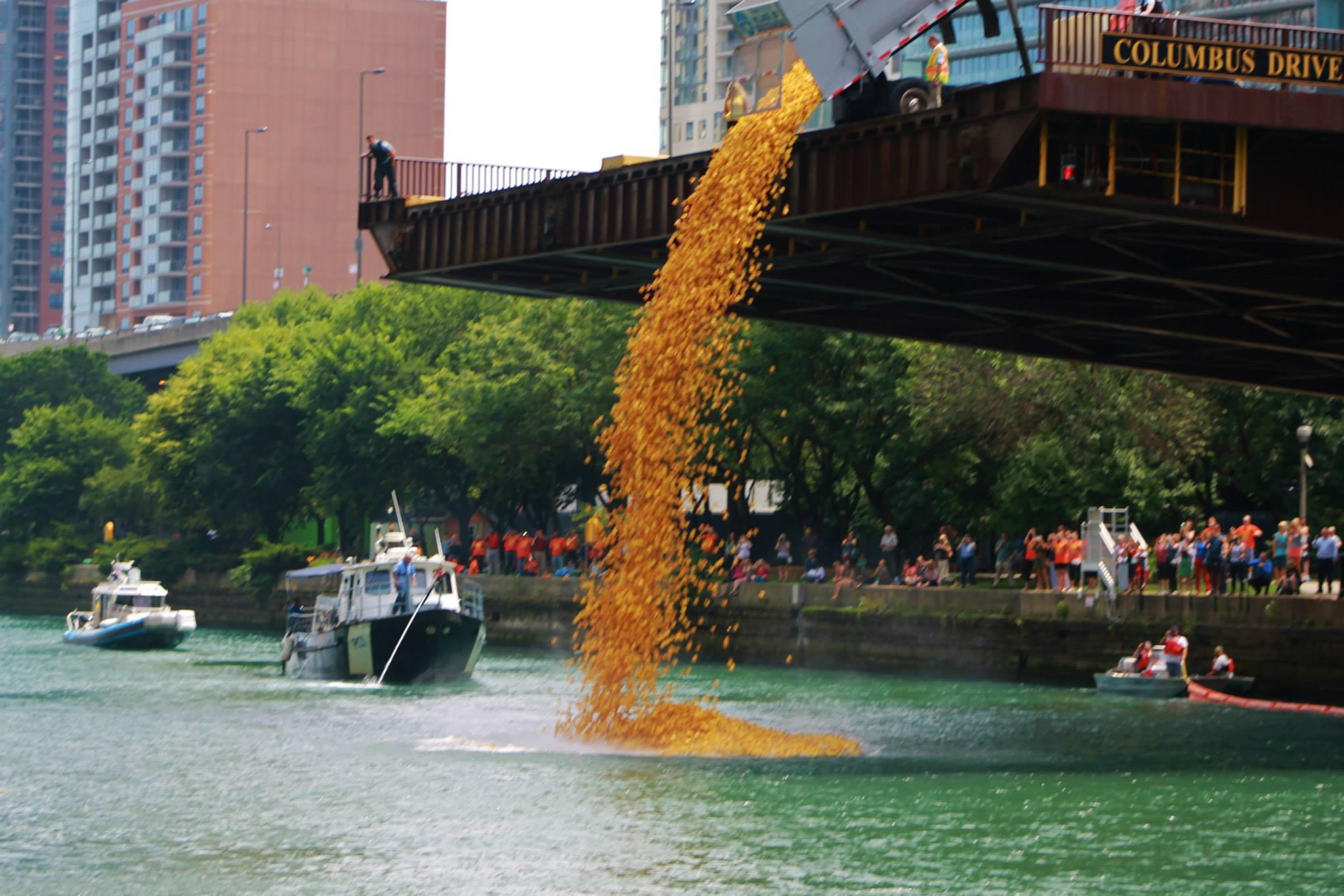 Chicago-Duck-launching-1