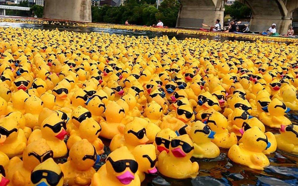 سباق البط المطاطي Ducky Derby